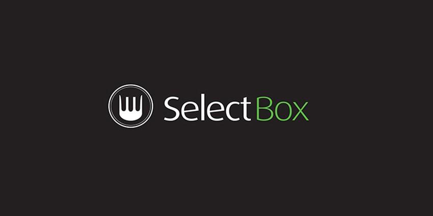 logo selectbox