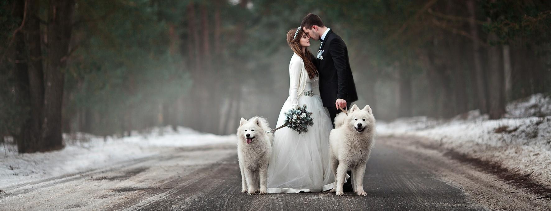 zimska poroka 2
